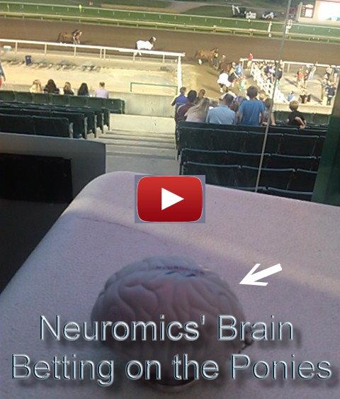 brainadventure_contest